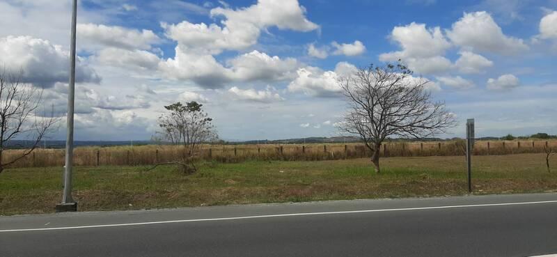 喜歡菲律賓這種大草原的景色
